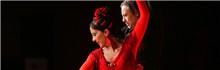 世界音乐博览:弗拉明戈舞蹈演出